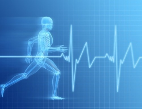 Heart Rates and Fitness