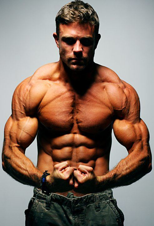 Wbff Pro Fitness Model David Kimmerle